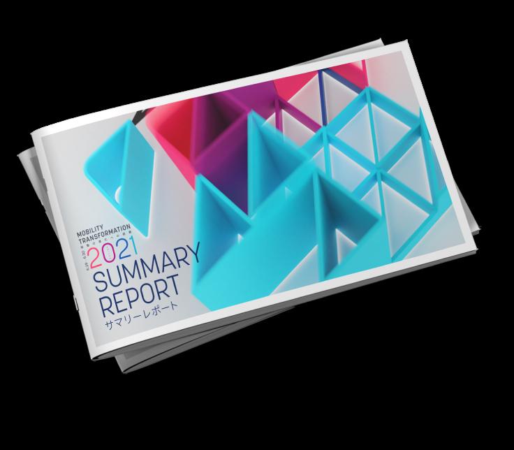 summary report 2021